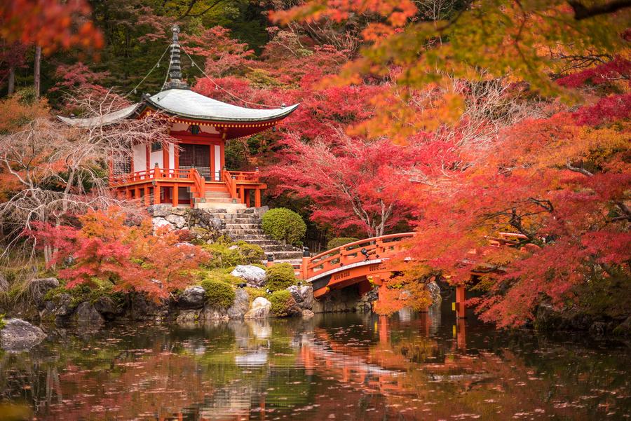 A Kyoto Garden Poster
