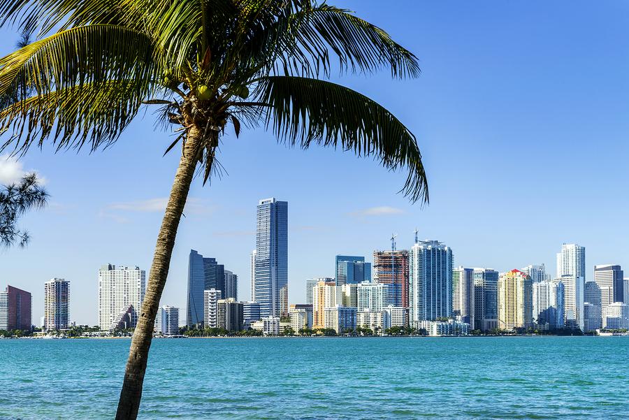 A Miami Poster
