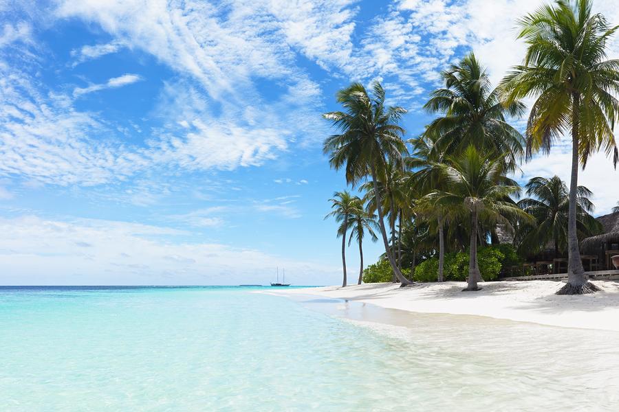 A Tropical Beach Poster