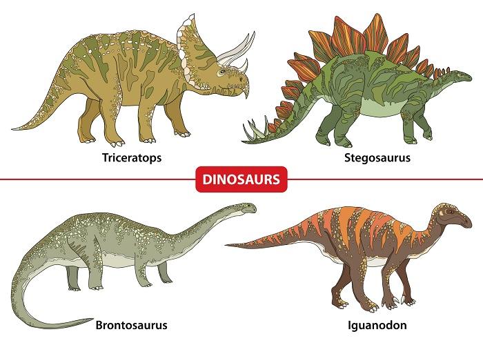 A Dinosaur Poster
