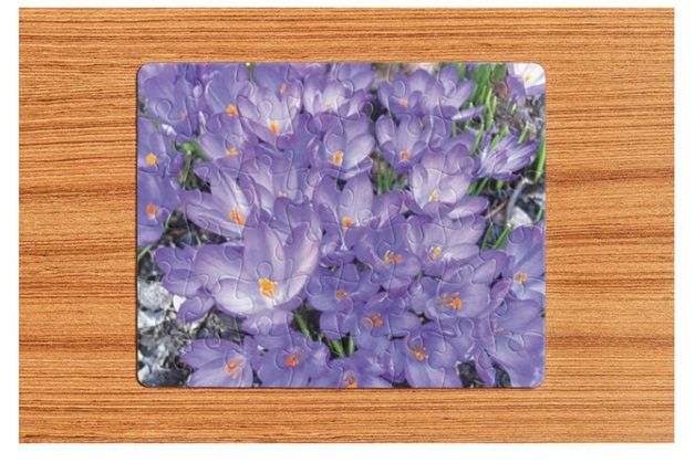 Flowers Puzzles