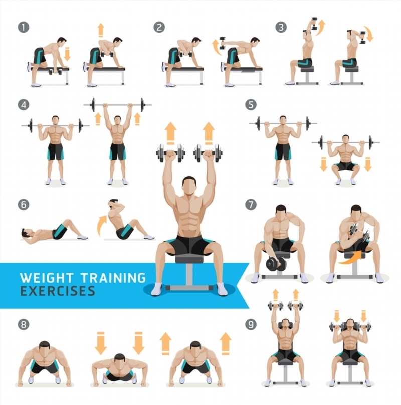 Poster of Dumbbell Exercises and Workouts WEIGHT TRAINING