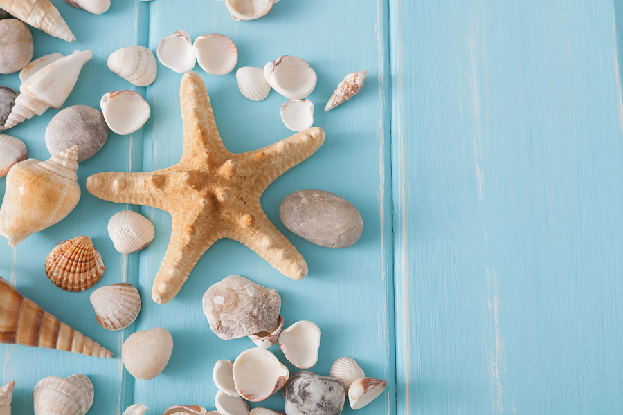 17 Ideas Of Beach Wall Decor And Other Cute Accessories